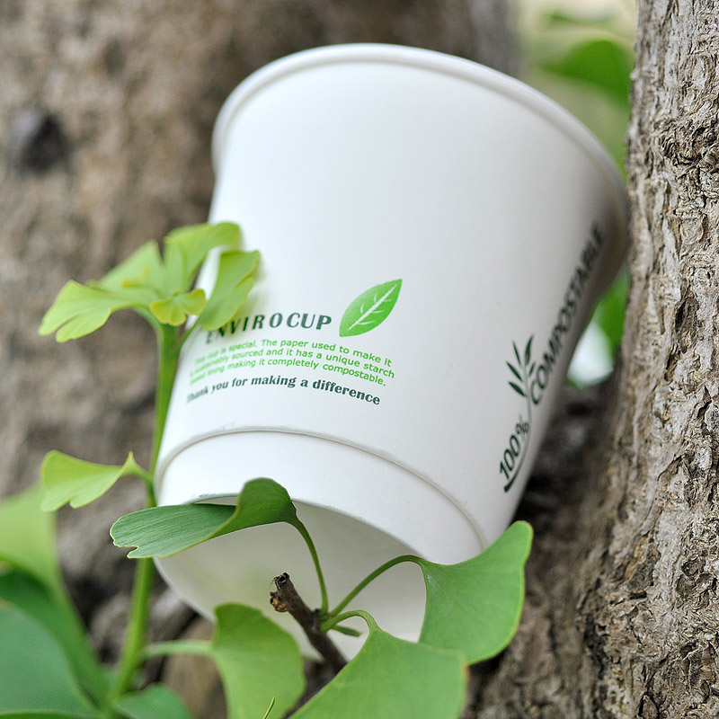 PLA lined coated double wall coffee paper cup
